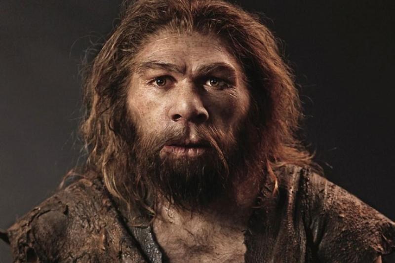 1511530113 poslednie neandertalcy zhili v yuzhnoy iberii